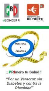 triptico Obesidad y Diabetes - PRI_003